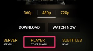 Screenshot of the Player selection drop-down in Showbox.